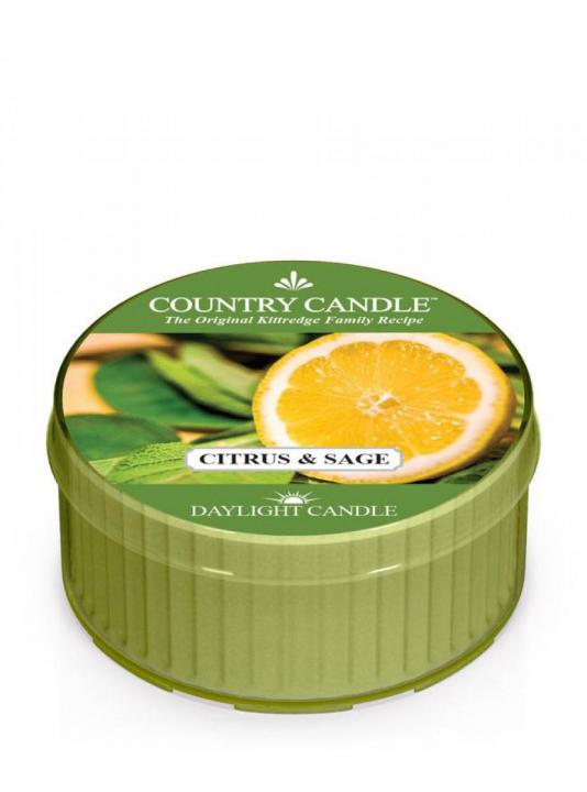 Country Candle - Citrus and Sage - Daylight (35g)