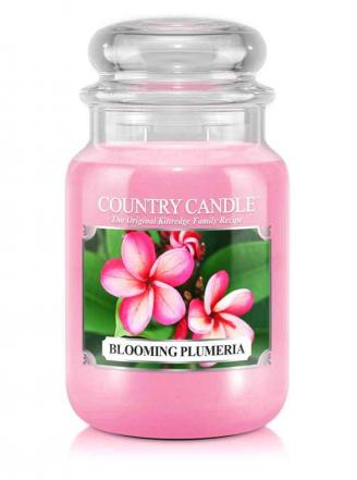 Country Candle - Blooming Plumeria - Duży słoik (652g) 2 knoty