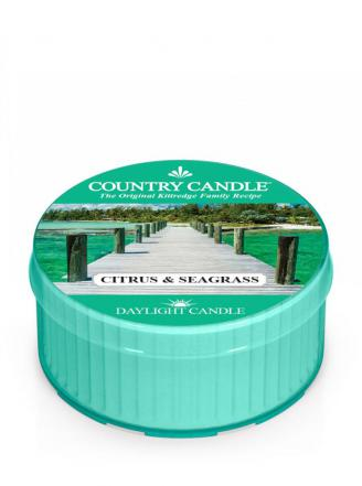 Country Candle  Citrus & Seagrass  Daylight (35g)